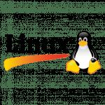Gestionale linux